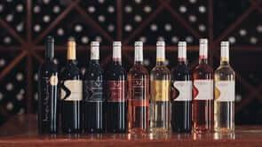 Vinhos Santa Vitória